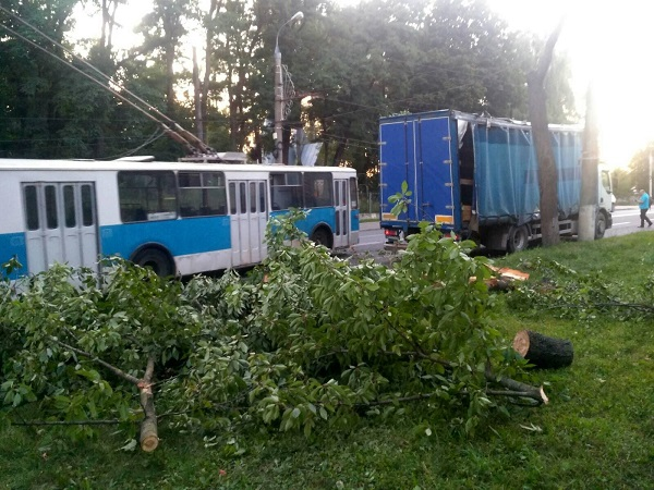 Тролейбусні дроти пошкодило дерево на Київській (ФОТО)